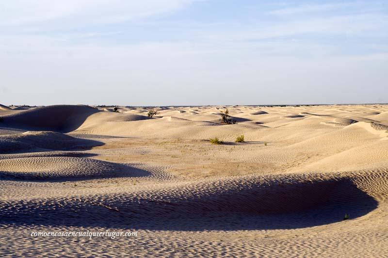 que hacer en tunez desierto de tozeur_foto_miguel angel munoz romero_005