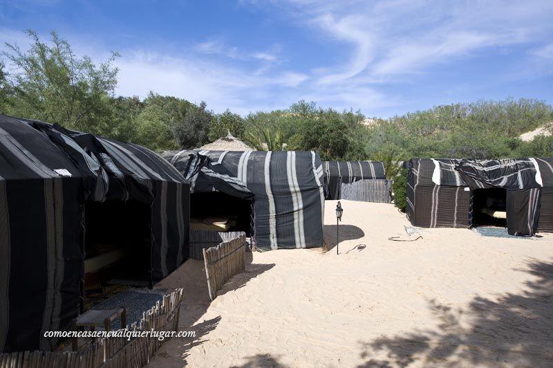 que hacer en tunez desierto de tozeur_foto_miguel angel munoz romero_008