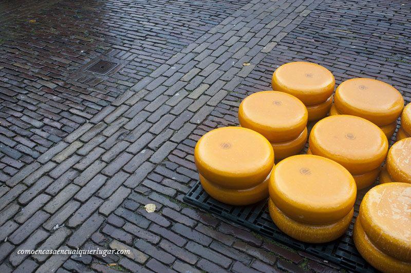 Mercado del queso de Alkmaar Holanda