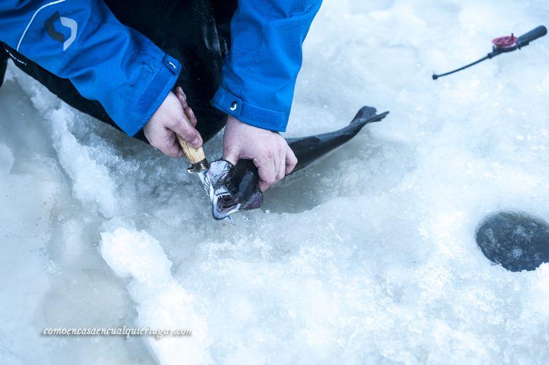 pesca en el hielo que hacer en rovaniemi