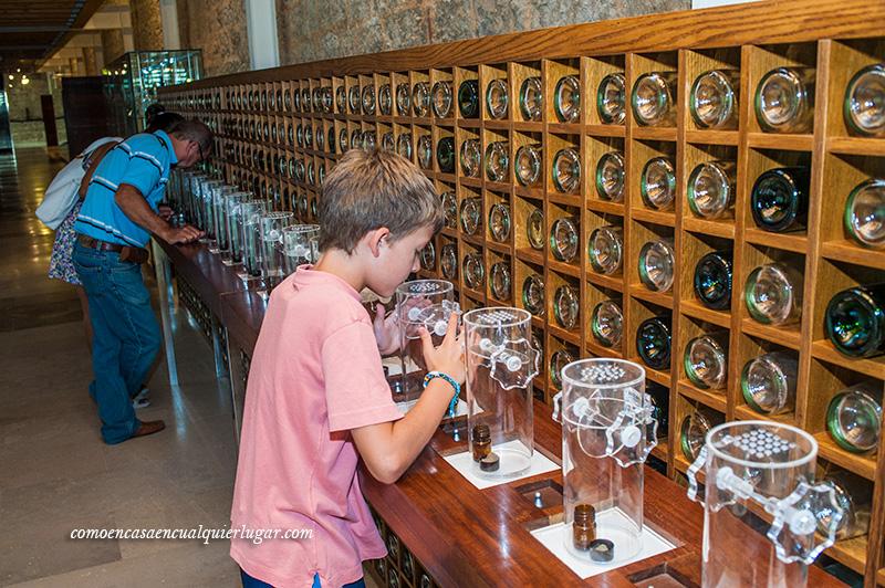 museo provincial del vino en Valladolid